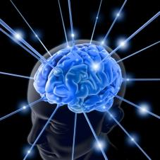 brain111111